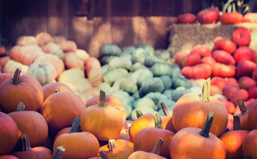 10 Ways to Use Local Pumpkin This Fall